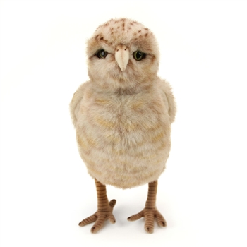 Handcrafted 12 Inch Lifelike Burrowing Owl Stuffed Animal by Hansa