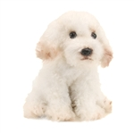 Small Sitting Stuffed Bichon Frise by Nat and Jules