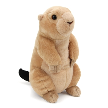 Plush Prairie Dog 12 Inch Stuffed Animal Cuddlekin By Wild Republic