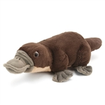 Cuddlekins Platypus Stuffed Animal by Wild Republic