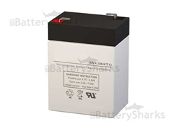 Sunnyway SW645 Battery 6V 4.5AH