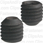 1/4-28 X 1/4 Socket Hd S/S Cup Pt