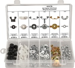60 Pc Air Cleaner Wing Nut Assortment