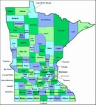 Laminated Map of Wadena County Minnesota