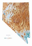 Raven Wall Map of Nevada
