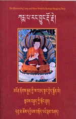Illuminating Lamp: Topics from the Ornament  of Realization and other works (Tibetan only) <br> By: Karmapa Rangjung Dorje
