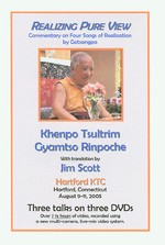 Realizing Pure View: Commentary on Four Songs of Realization by Gotsangpa, DVD <br>  By: Khenpo Tsultrim Gyamtso Rinpoche