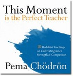 This Moment Is the Perfect Teacher: Ten Buddhist Teachings on Cultivating Inner Strength and Compassion <br>By: Pema CHodron
