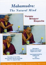 Mahamudra: The Natural Mind, DVD <br> By: Mingyur Rinpoche