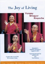 Joy of Living: A Public Talk DVD <br> By: Mingyur Rinpoche