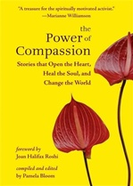 Power of Compassion: Stories That Open the Heart, Heal the Soul, and Change the World