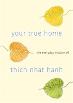 Your True Home: The Everyday Wisdom of 