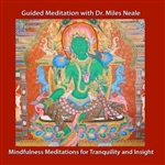 Mindfulness Meditations for Tranquility and Insight with Dr. Miles Neale