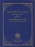 Subsequent Tantra: From the Four Tantras of Tibetan Medicine