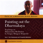 Pointing Out the Dharmakaya: Mahamudra Teachings, Pt. 1 (MP3 CD)<br>  By: Mingyur Rinpoche