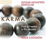 Karma: Finding Freedom in This Moment (CDs)  Pema Chodron &  Dzigar Kongtrul Rinpoche
