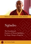 Ngondro: The Foundational Practices, Part1 The Four Thoughts DVD <br> By: Mingyur Rinpoche