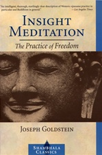 Insight Meditation: The Practice of Freedom<br> By: Joseph Goldstein