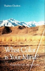 What Color Is Your Mind <br> By: Thubten Chodron