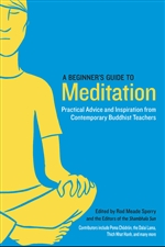 Beginner's Guide to Meditation: Practical Advice and Inspiration from Contemporary Buddhist Teachers