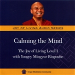 Calming the Mind: The Joy of Living Level I