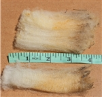 Raw Fleece- CVM/Romeldale - Rare Breed - Angel
