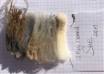 Raw Fleece- CVM/Romeldale - Rare Breed - A Boy Named Sue