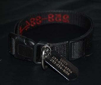 Pet Collar Solid
