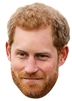 Prince Harry (Beard)