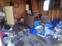 Storage Shed Cleanouts