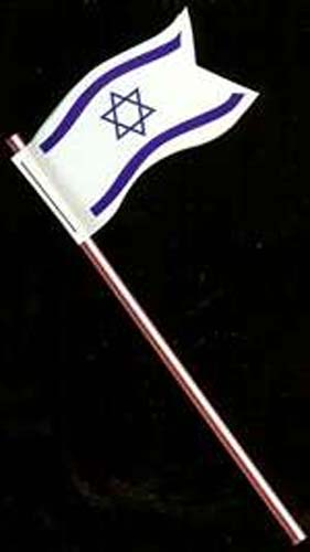 Israeli Flags for Decorating - 20/pkg