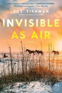 Invisible as Air by Zoe Fishman