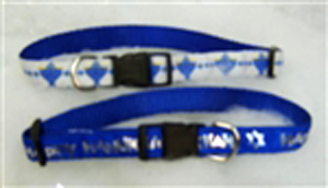 Small Blue Jewish Dog Collar