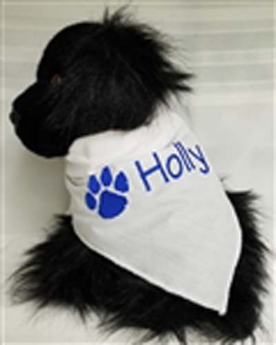 Personalized Dog Scarf with Paw Print