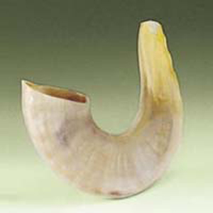 Small Shofar for Children and adults