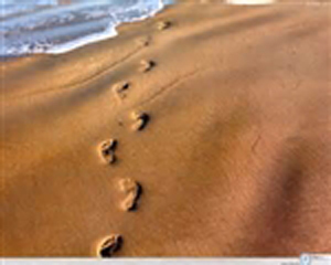 Walking to Freedom: Foot Prints in Sands of Israel
