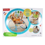Infant-to-Toddler Rocker (Fisher Price)