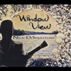 Nick DiSebastian - Window View