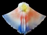 Angel Wings - Adult (Multicolor)