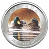 25 cent 2013 Coloured Coin - Ducks of Canada - Mallard