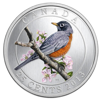 25 cent 2013 Coloured Coin - American Robin - Birds of Canada