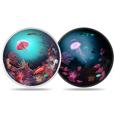 2016 $30 Fine Silver Coin - Illuminated Underwater Reef
