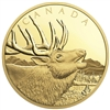 2017 $1,250 Elk - Pure Gold Coin