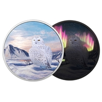 2018 $30 Arctic Animals and Northern Lights: Snowy Owl - Pure Silver Coin