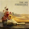 The Joy Formidable - Wolf's Law (LP, Vinyl)