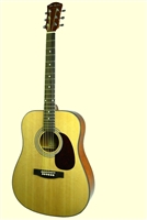 Glen Burton Conservatory SGA41 Dreadnought Acoustic Guitar (Multi-Colors)