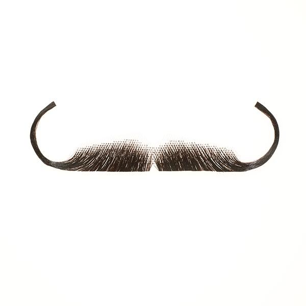 Dali Mustache Drawing Fake moustaches salvador dali watson moustache