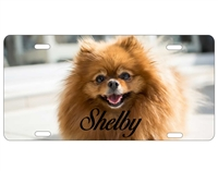 Your Own Dog Customize Personalized Novelty Front License Plate Decorative Vanity aluminum sign Car Tag