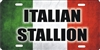 Italian flag Italian Stallion personalized novelty front license plate Decorative vanity car tag
