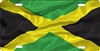 personalized novelty license plate Jamaican flag custom car tag